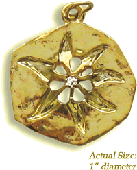 Mystic Star Lucky Amulet